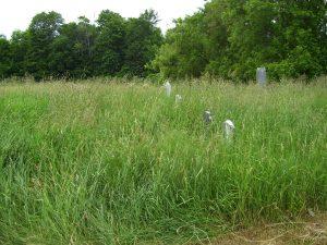 kerr-cemetery-photo-b-gibson-2012-3