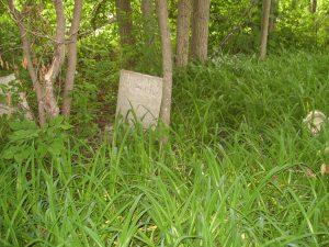 sanford-loverin-cemetery-photo-2011-3