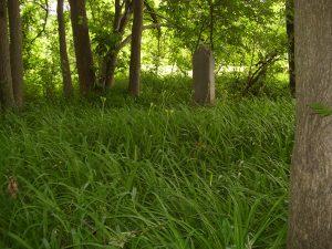 sanford-loverin-cemetery-photo-2011-4