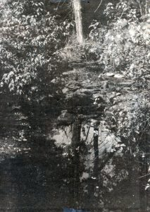 motts-mills-hutton-creek-c1985-1